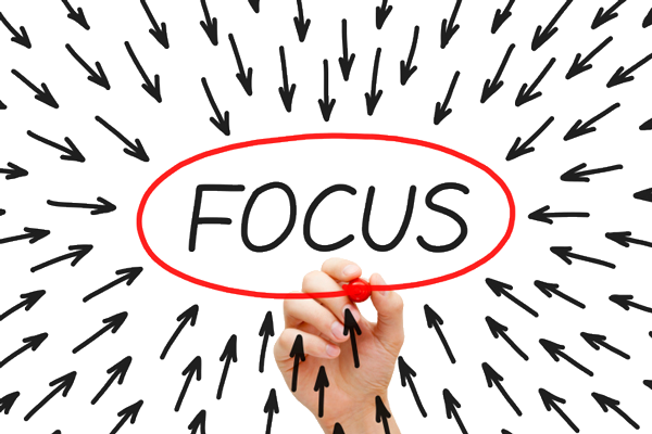 use focused marketing to target niche