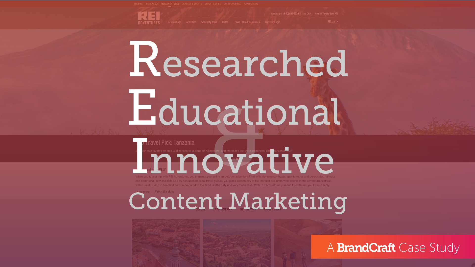 Researched Educational and Innovative Content Marketing with REI Hero
